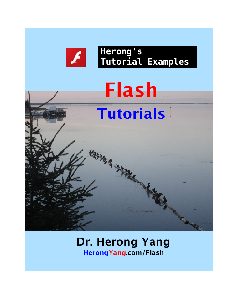 Full Version in PDF/EPUB: Flash Tutorials